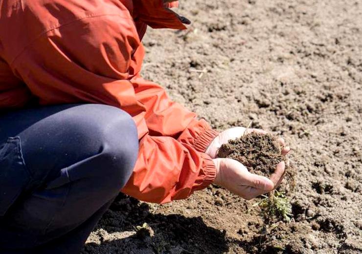 作る:土作りから大切に。栄養分を豊富に含んだ土が、みずみずしい野菜を作るコツです。