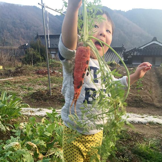 栽培、収穫といった、作る喜びも最大限に